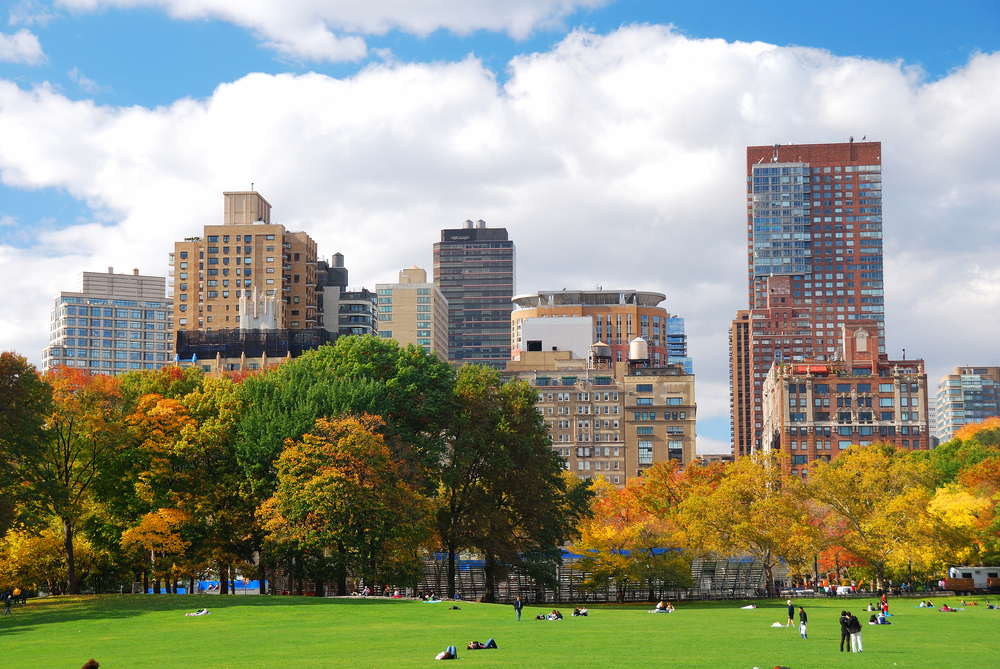 Central Park Luxury Condos And